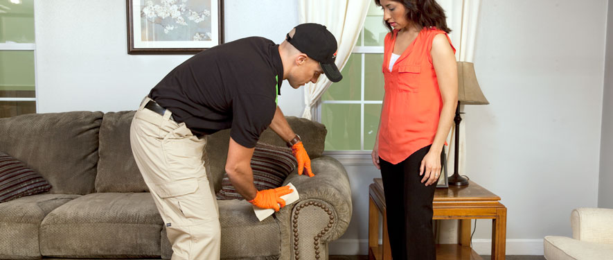 Newmarket, ON carpet upholstery cleaning